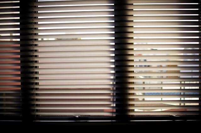 dual roller blinds