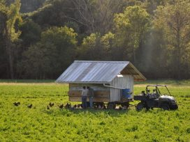 Why Buy A Land Trust Farm